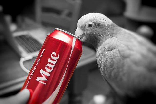 """La campagne """"Share A Coke"""", l'une des plus célèbres opérations de marketing expérientiel de 2013 - (CC) Indigo Skies Photography"""