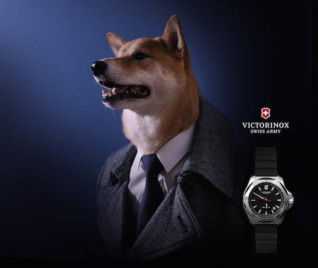 (CC) Victorinox
