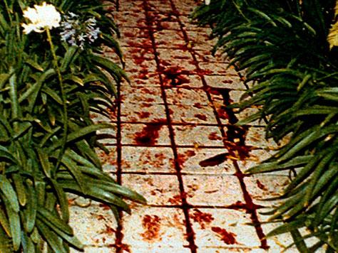 Une photo qui donne une idée de la sauvagerie des deux meurtres sans pour autant vous montrer les cadavres des deux malheureuses victimes - (CC) USA Today